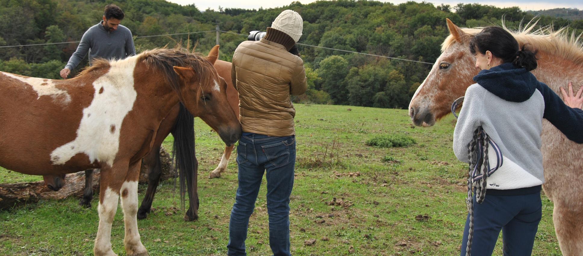 Le cheval, un animal noble et une passion de la créatrice Ugholn